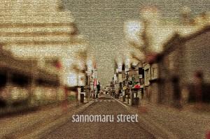 sannomaru-s